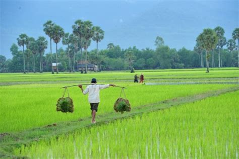 Diversifying Cambodia's Economy, Easier Said than Done