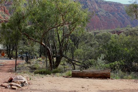 Ormiston Gorge camping review